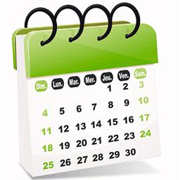 cronograma_de_trabajo